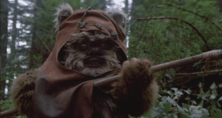 E11 – An Ewok on experimenting with pricing (Brad Touesnard, Delicious Brains)